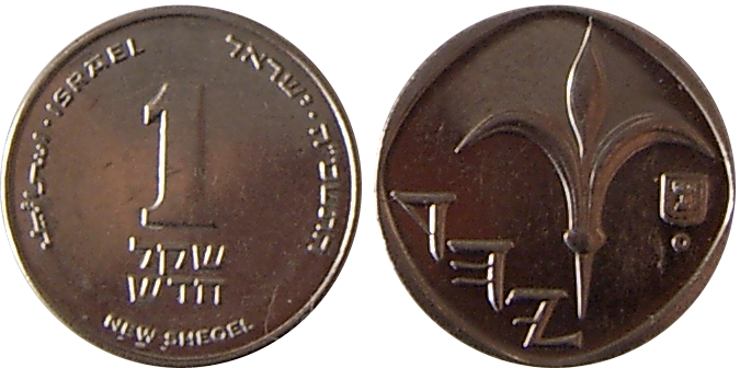 New Israeli Sheqel Coin